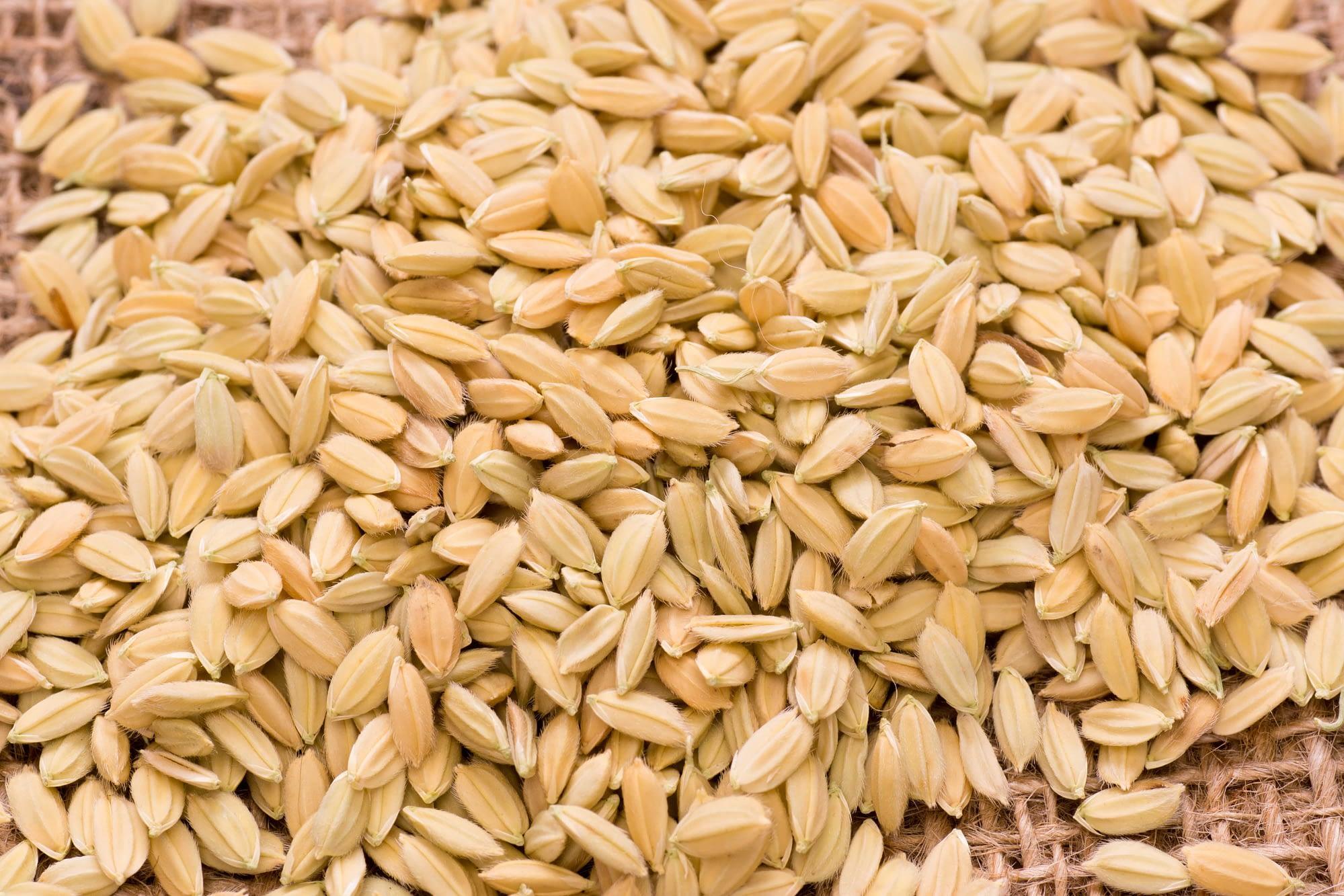 米+刃=籾