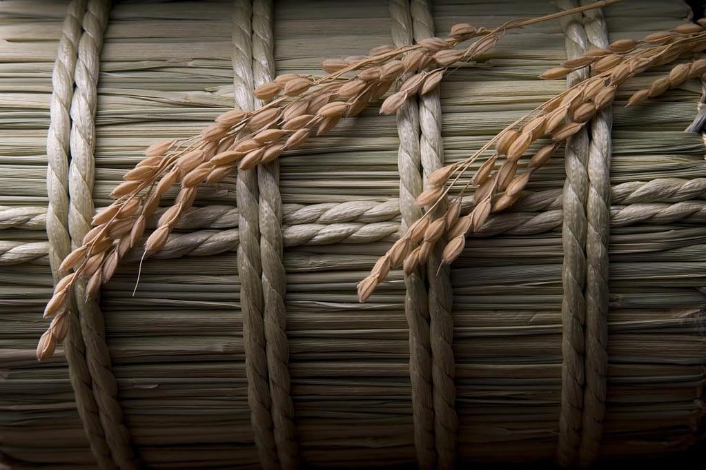 稲穂を横に置いた姿から、米という字ができた説