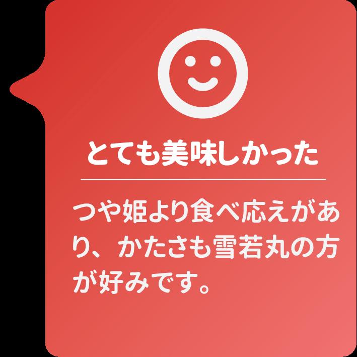 雪若丸レビュー@ニシタニ様
