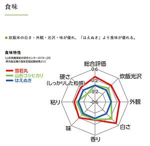 雪若丸・はえぬき・コシヒカリの比較チャート